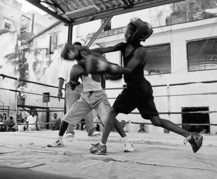 Junge Boxer, Kuba